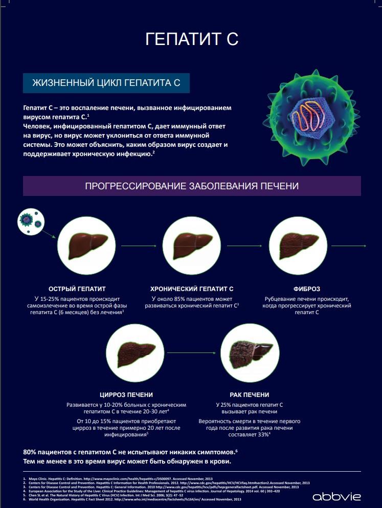 Процесс развития гепатита С - процесс развития заболевания печени (инфографика).